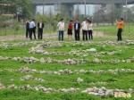 竹縣空品淨化區化身「食物森林」 實踐生態城市夢想