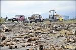 林務局︰中客帶動珍木需求 漂流木水漲船高 盜伐嚴重