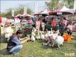 社區空間改造 來惠「愛豬呷」奪冠