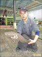 凶殘「魚虎」被逮捕 成鯉魚潭佳餚