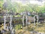 竹市琉璃燈會「魚躍龍門」 供學校認養