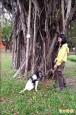 褐根病偵測犬 幫佳里中山公園400樹看病