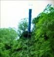 父子修吊橋 墜80米溪谷雙亡