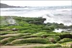 2500人淨灘 綠石槽變美了