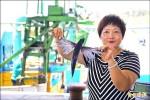 捕獲量逐年減少 飛魚價漲五成