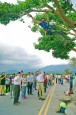 《TAIPEI TIMES 焦點》 Tree doctor brings 'Takeshi Kaneshiro tree' back to life