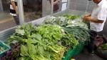 雙溪有機無毒蔬果 南港軟體園區熱賣