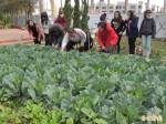 善化高中「開心農場」 不怕食安問題連環爆