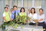 綠筍「渴死」減產 台南農損恐達15億