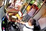 校狗跟上公車 司機狠踹罰3千