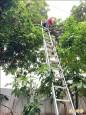台中市府臨時工班 要求加保團體傷害險