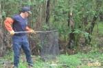 直擊人猴大戰 2人傷、猴被擒