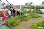 廢物利用 竹縣環保局打造頂樓空中花園