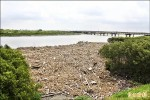 朴子溪河口濕地 大量垃圾堆積