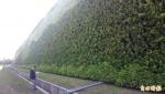 廢棄物處理廠植生牆 全球最大