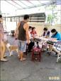 貓狗結紮 雲縣補助每隻1500元