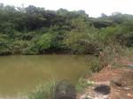 12歲男童失足落池塘 失去生命跡象