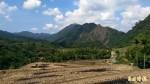 國發會發展花東有機農業  選定豐南與奇美部落試點