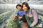 暑期農工日薪上千 學生沒興趣