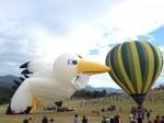 送子鳥熱氣球升空!助他求婚成功