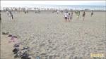 〈塵爆影響〉 竹縣新月沙灘音樂祭 煙火秀喊卡