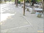 土表硬化 台南公園將分區封園鬆土