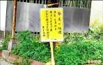 新聞辭典/送肉粽