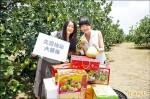 麻豆柚燈節 徵二千柚箱