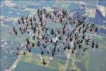 164人牽手跳傘 創世界紀錄