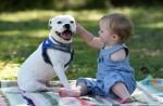 當獨臂女童遇上三腳狗 畫面好有愛!
