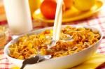 今天早餐吃玉米片嗎? 原先是用來遏止自慰……