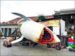 天鵝展翅 鯊魚擱淺