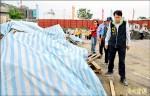 台南對症下藥 學者籲評估滅蚊藥效