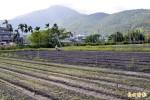 6農場契作供應