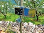 山區防猴損農作 市府擬補助電牧器