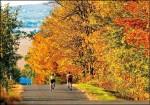 秋楓、冬雪、繽紛旅趣─秋冬出國旅遊提案