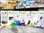 認養流浪犬 七色彩虹做宣傳