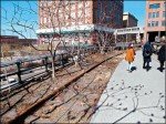 〈旅遊的滋味〉漫步紐約高架公園