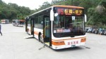 新北3門低地板公車 國慶日上路