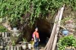 旗尾山下秘境防空洞 蝙蝠生態豐富