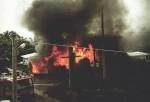 消防員滅蜂引燃毀民宅 屋主傻眼