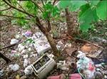 中壢社宅地是垃圾坑 將評估清運費