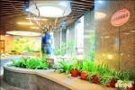 到豪宅種菜 新板公益空間變市民農園