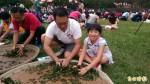 南投世界茶業博覽會 千人揉茶慶雙十