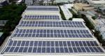 國際太陽光電展 友達將參展