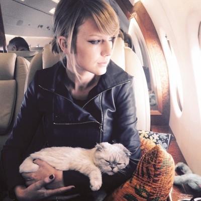 泰勒絲變貓奴   愛貓舔毛影片萌殺網友