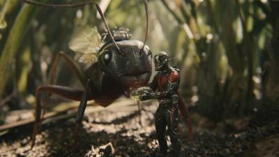 蟻人「坐騎」太揪心 3周票房破3億