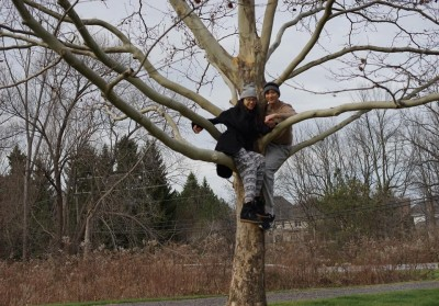 王力宏結婚2周年 爬樹慶祝超搞怪