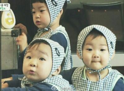 三胞胎最終回 萬歲這句話逼哭所有人
