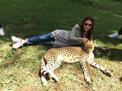 黃心娣網劇播放破17億 肯亞大膽合照獵豹
